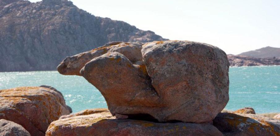 Pedra do Oso en Camariñas-Costa da Morte